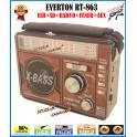Everton RT-863 Fener Usb Ve Kart Girişli Manuel El Radyosu