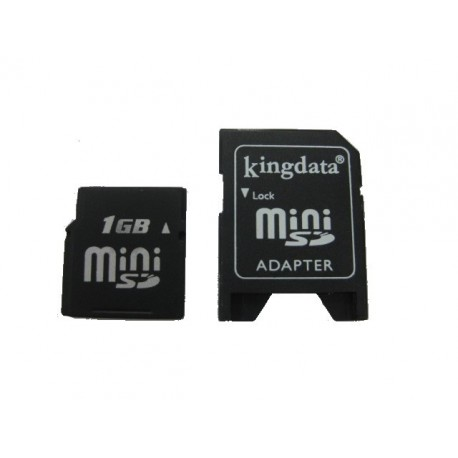 King Data 1Gb Mini Sd Kart
